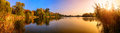 Lake Sunset Panorama In Gold A...