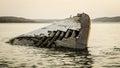 Title: Lake Superior Shipwreck