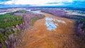 Lake swamp Royalty Free Stock Photo