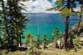 Lake tahoe through the pine trees view a of Stock Photos