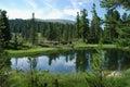 Lake in taiga Royalty Free Stock Photo
