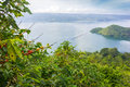 Lake toba indonesia from coffee farm Royalty Free Stock Photos