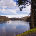 Lake verny vyrnwy in early spring llanwddyn wales Royalty Free Stock Photos
