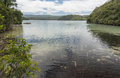 Lake Waikareiti Walk. Te Urewera National Park Royalty Free Stock Photo
