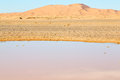 In the lake yellow desert and dune sunshine of morocco sand Royalty Free Stock Image