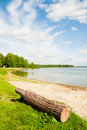 Lakeshore grassy banks Royalty Free Stock Photo