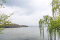 The lakeshore landscape this photo was taken in west lake cultural of hangzhou zhejiang province china Royalty Free Stock Photography