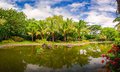 The lakeside coconut forest landscape image taken in china s yunnan province xishuangbanna prefecture jinghong city tropical Royalty Free Stock Image