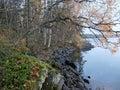 Lakeside Royalty Free Stock Photo