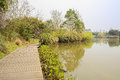 Lakeside planked footway in sunny spring chengdu china Stock Photography