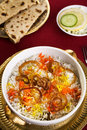 Lamb Biryani and Chapatis Royalty Free Stock Images