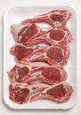 Lamb chops on a tray supermarket polystyrene of Stock Photography