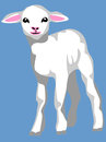 Lamb color illustration of white Stock Photography