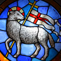 Lamb of god stained glass in cathedral in florence th century Stock Photography