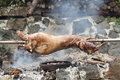 Lamb roast on a spit Royalty Free Stock Photos