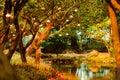 Lamp met boom in het park bij nacht uitstekende stijl Stock Foto's