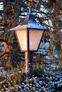 Lamp on winter morning Stock Image
