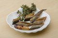 Lamprey smoked seafood delicacy with salad and herbs Stock Photos