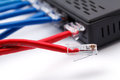 LAN network and ethernet cables Royalty Free Stock Photo