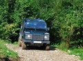 Land Rover on forest road Royalty Free Stock Images