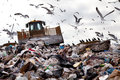 Landfill with birds truck working in in the sky Royalty Free Stock Images