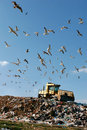 Landfill Working Stock Photo