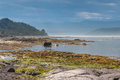 Landscape along the water shore Royalty Free Stock Photo