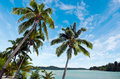 Landscape of arutanga island in aitutaki lagoon cook islands view Royalty Free Stock Photos