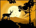 Landscape background deer on the moonlight Royalty Free Stock Photo