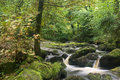 Landscape of becky falls waterfall in dartmoor national park eng england Royalty Free Stock Images