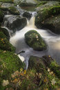 Landscape of becky falls waterfall in dartmoor national park eng england Royalty Free Stock Photo