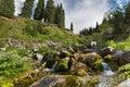 Landscape Brook Stream Water N...