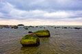 Landscape coast of the baltic sea Stock Photography