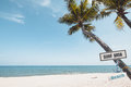 Landscape of coconut palm tree on tropical beach in summer. Royalty Free Stock Photo