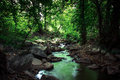 Landscape consisting of river rocks and trees green Stock Photography