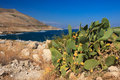 Landscape in Crete Stock Images