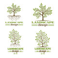 Landscape design company emblems. Tree with roots logo Royalty Free Stock Photo