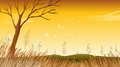 A landscape with a dying tree illustration of Royalty Free Stock Photo