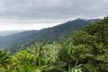 Landscape At El Yunque Nationa...