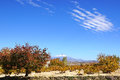 Landscape with Erciyes volcano in Cappadocia. Royalty Free Stock Photo