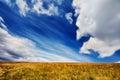 Landscape field of green fresh grass under blue sky Royalty Free Stock Photo