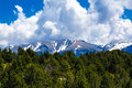 Landscape of forest and pyrenees mountains Royalty Free Stock Photo
