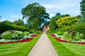 Landscape gardening in natural light Royalty Free Stock Image