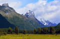 Landscape of glenorchy new zealand nz nzl heard cows grazing under high mountain range with snow caps near in the south island Stock Photo