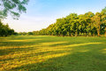 Landscape of grass field and green environment public park use a Royalty Free Stock Photo