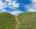 Landscape with hiking path on a blue green planet Royalty Free Stock Photography
