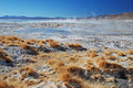 Landscape with hot springs in bolivian desert Stock Photo