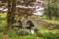 Landscape Image Of Medieval Br...