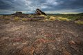 Landscape of Kakadu, Australia Stock Photos