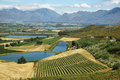 Landscape of lagoons and vineyards from gydo pass south africa Royalty Free Stock Images